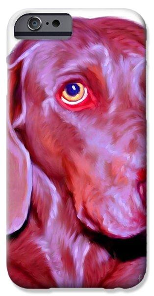 Weimaraner Puppy iPhone Cases - Weimaraner Pet Art iPhone Case by Iain McDonald