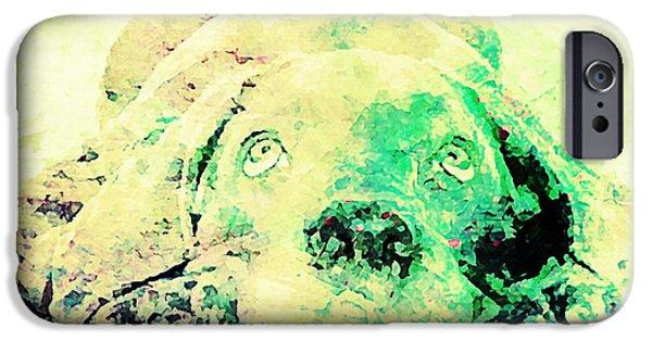 Weimaraner Puppy iPhone Cases - Weimaraner Puppy iPhone Case by Jennifer Choate