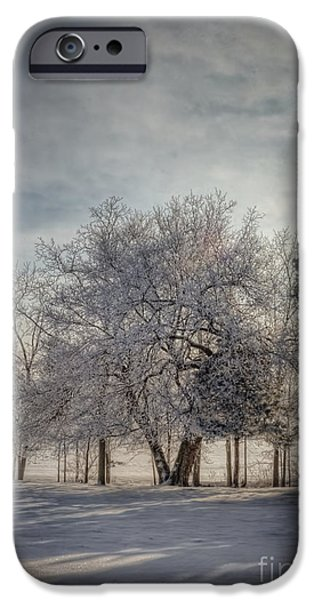 Snow Scene iPhone Cases - Welcome Sunshine iPhone Case by Pamela Baker