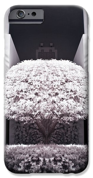 Nature Study iPhone Cases - Welcome Tree Infrared iPhone Case by Adam Romanowicz