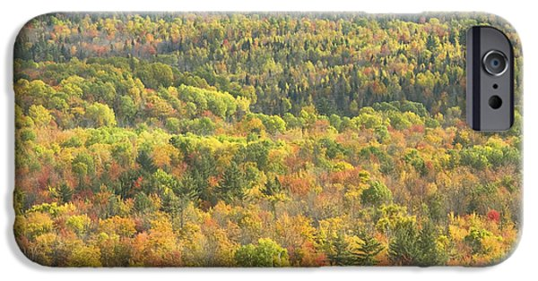 Maine Mountains iPhone Cases - Weld Maine Fall Forest In Mount Blue State Park iPhone Case by Keith Webber Jr