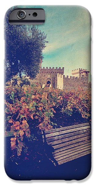 Vine Leaves iPhone Cases - Well Meet Among the Vines iPhone Case by Laurie Search