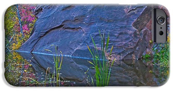West Fork iPhone Cases - West Fork Cattails iPhone Case by Brian Lambert