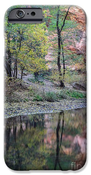 West Fork iPhone Cases - West Fork Reflection iPhone Case by Tamara Becker