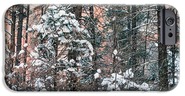 West Fork iPhone Cases - West Fork Snow iPhone Case by Tam Ryan