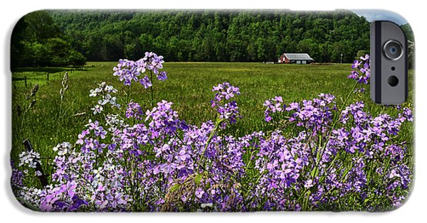 Phlox iPhone Cases - West Virginia Serenity  iPhone Case by Thomas R Fletcher