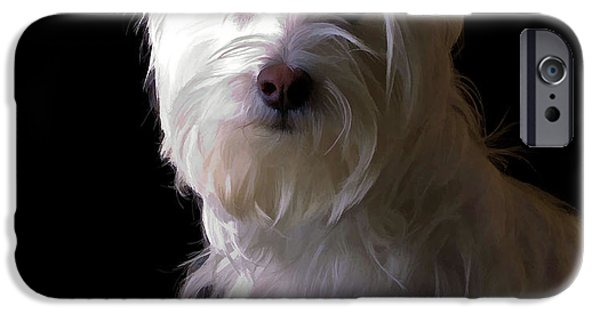 Pet Photography iPhone Cases - Westie Drama iPhone Case by Edward Fielding