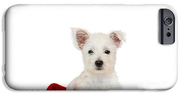 Westie Digital iPhone Cases - Westie Puppy and Santa Hat iPhone Case by Natalie Kinnear