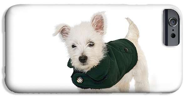 Westie Digital iPhone Cases - Westie Puppy in a Coat iPhone Case by Natalie Kinnear