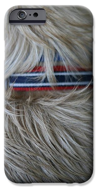 Fuzzy Golden Puppy iPhone Cases - Wet Dog iPhone Case by Dylan Bellerose