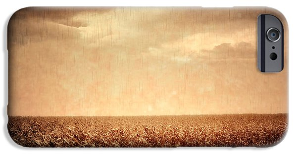 Country Dirt Roads iPhone Cases - Wet Season iPhone Case by Wim Lanclus