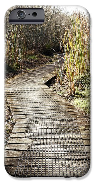 Wetland iPhone Cases - Wetland walk iPhone Case by Les Cunliffe