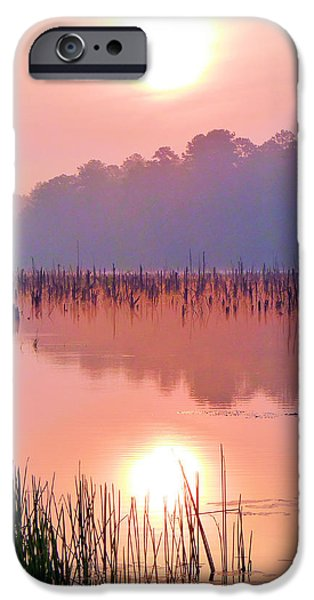 Rucker iPhone Cases - Wetlands Sunrise iPhone Case by JC Findley
