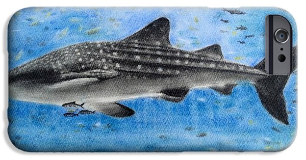 Shark Pastels iPhone Cases - Whale shark  iPhone Case by Keiko Olds