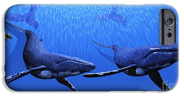 Free-diver iPhone Cases - Whales with Diver iPhone Case by Corey Ford
