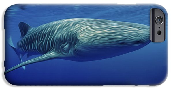 Plankton Paintings iPhone Cases - Whaleshark  iPhone Case by Lanjee Chee