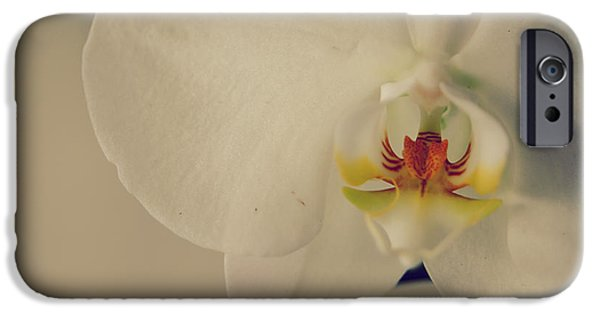 Flora iPhone Cases - What Love Felt Like iPhone Case by Laurie Search