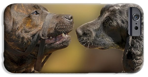 Dog Close-up iPhone Cases - What Lovely Teeth You Have iPhone Case by Linsey Williams