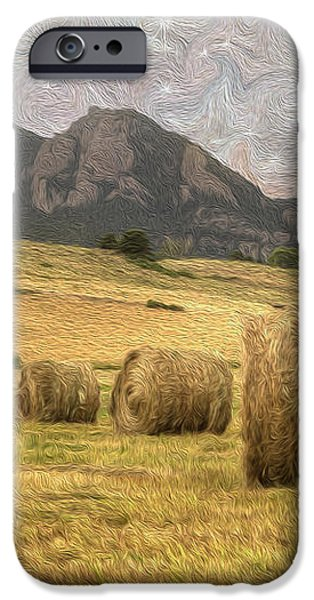 What The Hay iPhone Case by Juli Scalzi