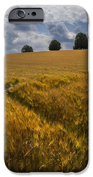 Swiss Landscape iPhone Cases - Wheat Fields iPhone Case by Debra and Dave Vanderlaan