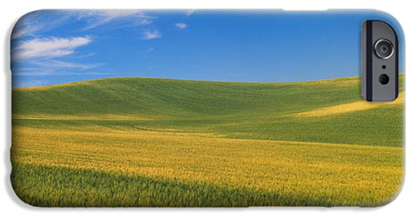 Agricultural iPhone Cases - Wheat Fields, S.e. Washington iPhone Case by Panoramic Images