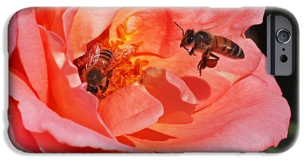 Insects Photographs iPhone Cases - Wheels Down iPhone Case by Rona Black