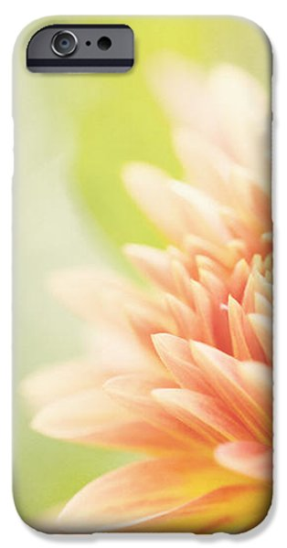When Summer Dreams iPhone Case by Reflective Moment Photography And Digital Art Images