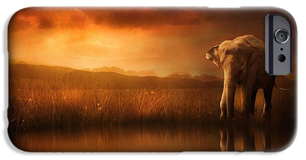 Elephants iPhone Cases - When the Sun Goes Down iPhone Case by Jennifer Woodward