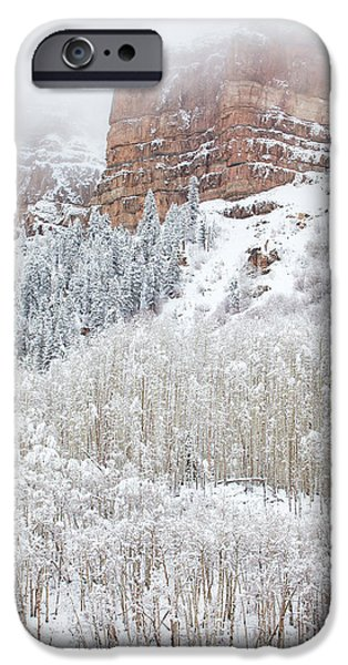 Winter Scene iPhone Cases - When Winter Falls iPhone Case by Darren  White