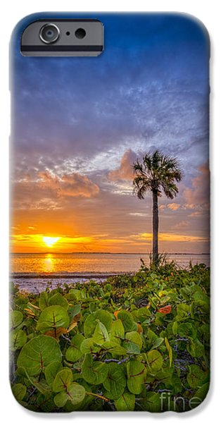 South Beach iPhone Cases - Where the Heart Is iPhone Case by Marvin Spates