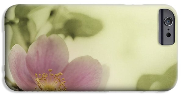 Flora Photographs iPhone Cases - Where The Wild Roses Grow iPhone Case by Priska Wettstein