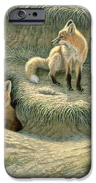 Where's Mom-Fox Pups iPhone Case by Paul Krapf