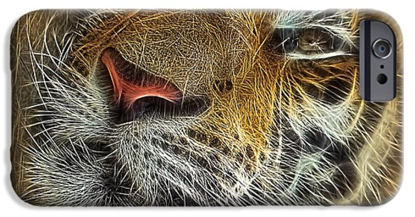 The Tiger Digital Art iPhone Cases - Whiskers of the Tiger iPhone Case by Kaye Menner