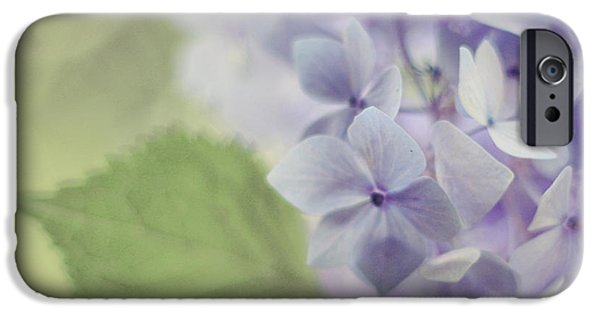 Hydrangeas iPhone Cases - Whisper iPhone Case by Amy Tyler