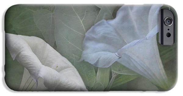 Night Angel iPhone Cases - Whispers of Angel Trumpet Datura iPhone Case by Angie Vogel