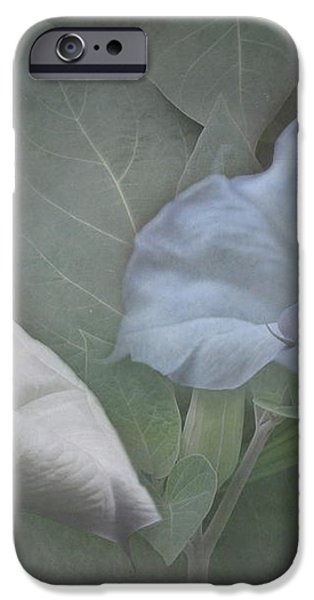 Whispers of Angel Trumpet Datura iPhone Case by Angie Vogel