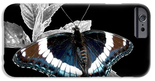 Admiral Digital iPhone Cases - White Admiral iPhone Case by Alison Barrett Kent