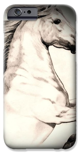 Drawing Of A Horse iPhone Cases - White Andalusian in Vinette iPhone Case by Cheryl Poland