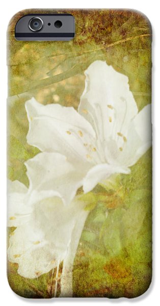 Flora Drawings iPhone Cases - White Azalea iPhone Case by Judy Hall-Folde
