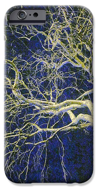 Guy Ricketts Photography iPhone Cases - White Bony Fingered Arrows iPhone Case by Guy Ricketts