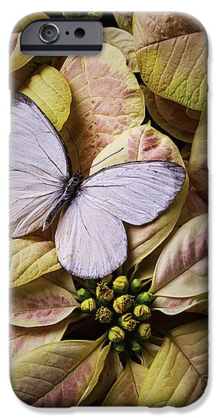 Insects Photographs iPhone Cases - White Butterfly On Poinsettia iPhone Case by Garry Gay