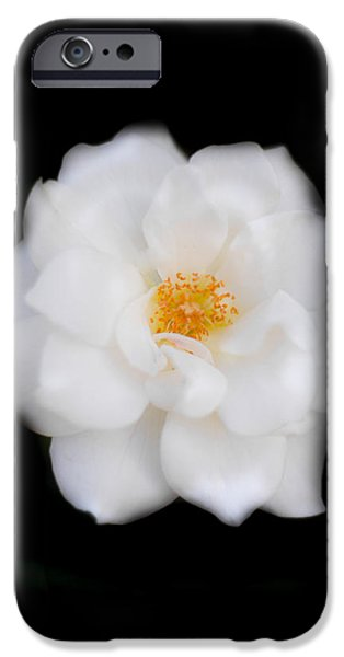 Camellia iPhone Cases - White Camellia Vertical iPhone Case by Parker Cunningham