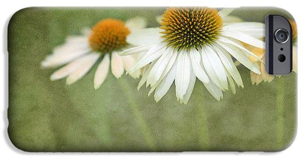 Trio Photographs iPhone Cases - White Coneflower Trio  2 iPhone Case by Rebecca Cozart