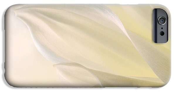 Abstractions iPhone Cases - White Delicacy iPhone Case by Mary Jo Allen