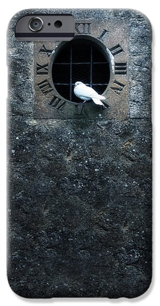 Clock iPhone Cases - White Dove iPhone Case by Joana Kruse