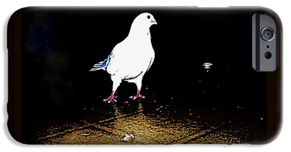 Yomamabird Rhonda iPhone Cases - White Dove iPhone Case by YoMamaBird Rhonda