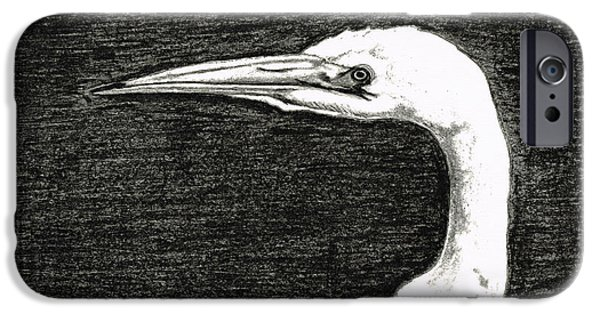 Snowy Drawings iPhone Cases - White Egret Art - The Great One - By Sharon Cummings iPhone Case by Sharon Cummings