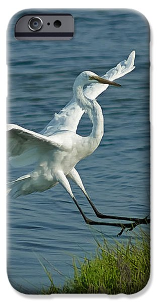 White Egret Landing 2 iPhone Case by Ernie Echols