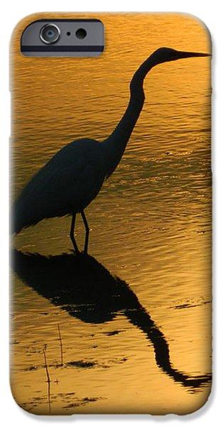 White Egret Reflection iPhone Case by Nancy Spirakus