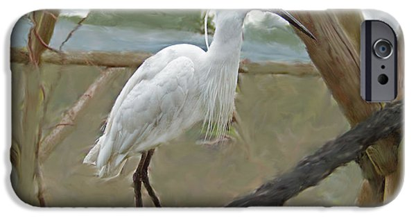 Animal Glass iPhone Cases - White Egret iPhone Case by Rumyana Whitcher
